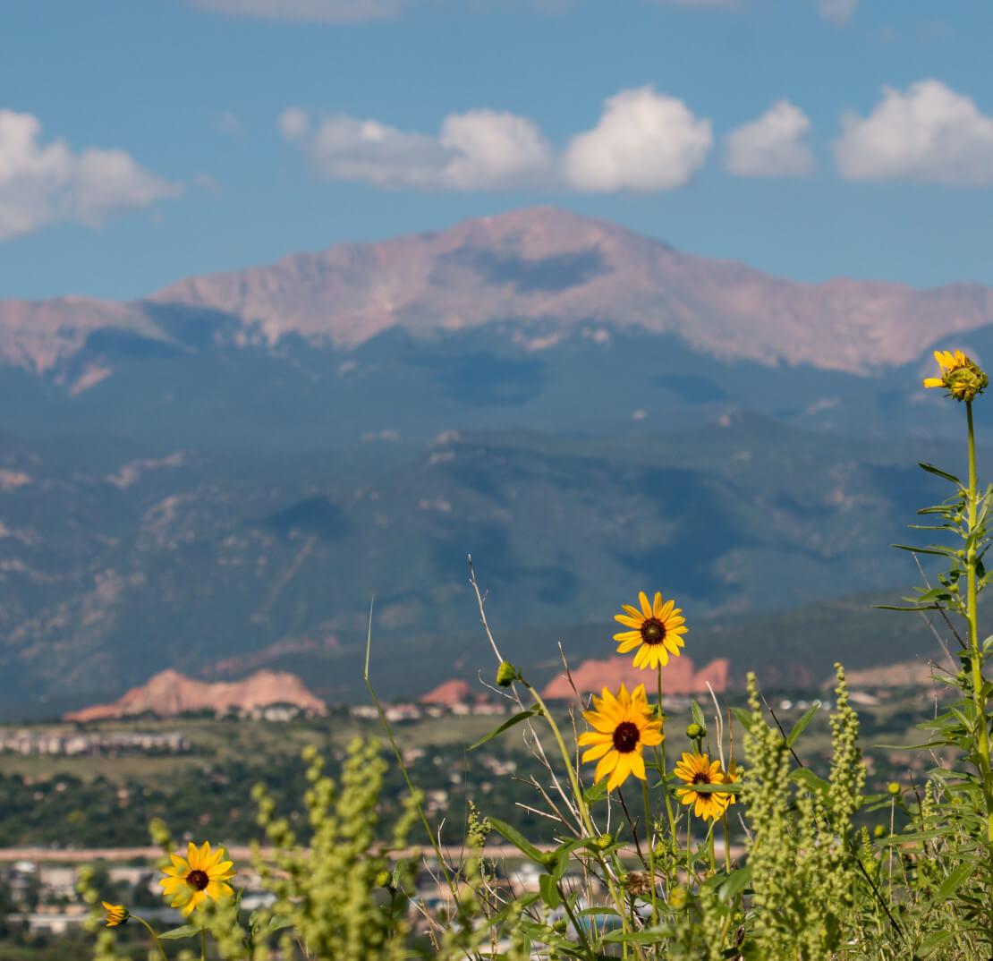 Pikes Peak in summer